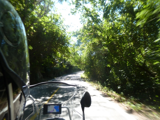 Driving through the jungle