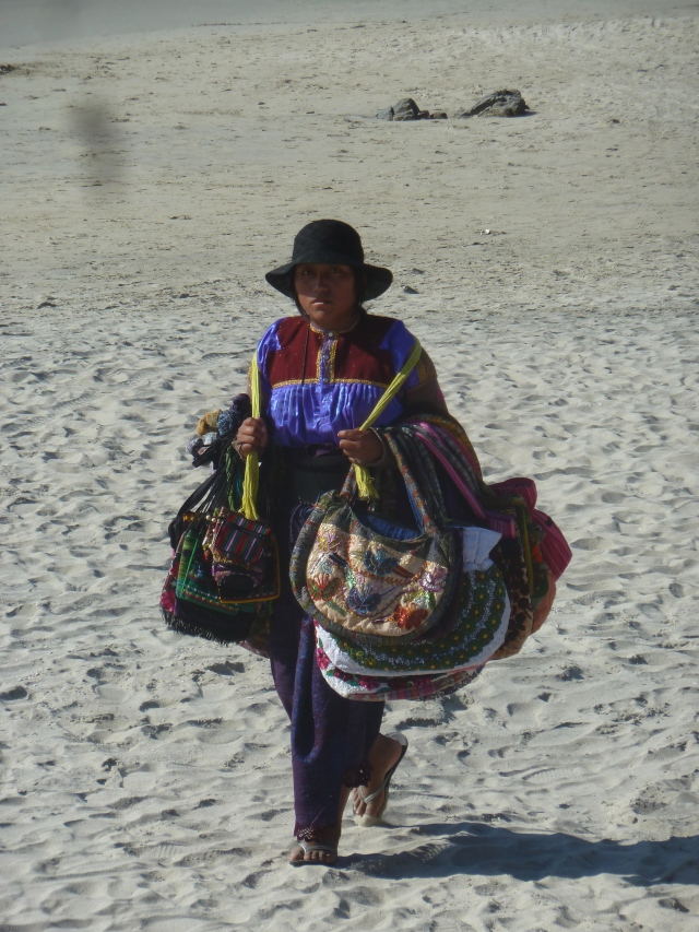purse? bag?