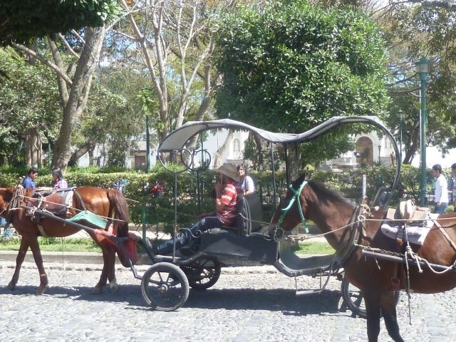 Antigua carriage ride - driver talking on his cell