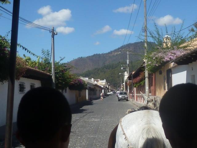 Carriage ride through Antigua