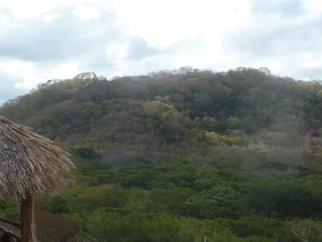 Nicaragua  jungle view from Pacific Bay Hotel