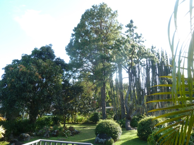 Room with a view - gardens at Panamonte Inn, Boquete, Panama