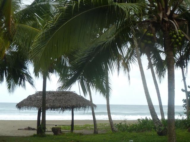 Playa Negra, Costa Rica - neart Puerta Viejo