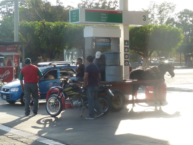 Horse cart getting gas :)