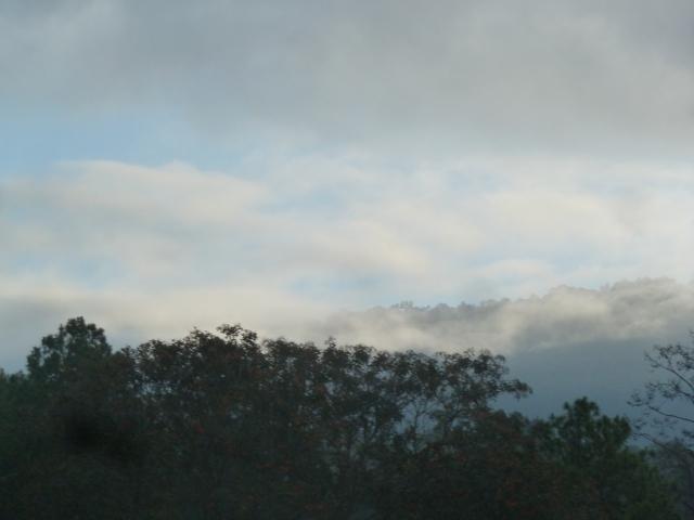 Morning mist in Honduras