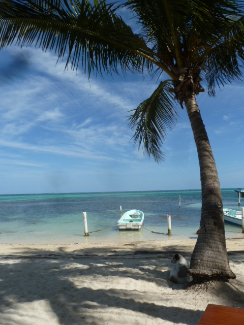 View from Estel's, Ambergris Caye, Belize