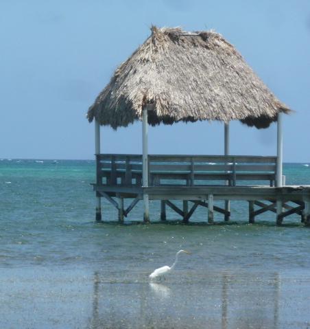 Bike ride on the beach, Ambergris Caye, Belize