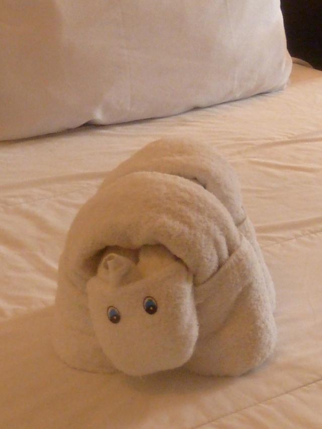 hippo towel
