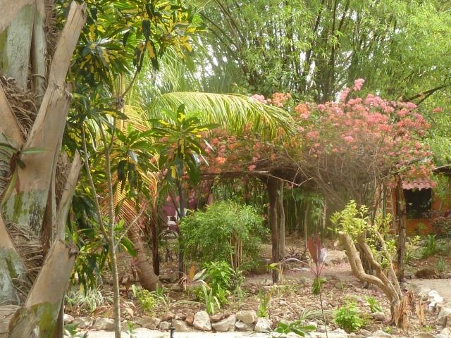 Gardens at Machan Che, Izamal, Mexico