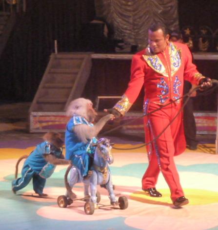 Circus, Campeche, Mexico