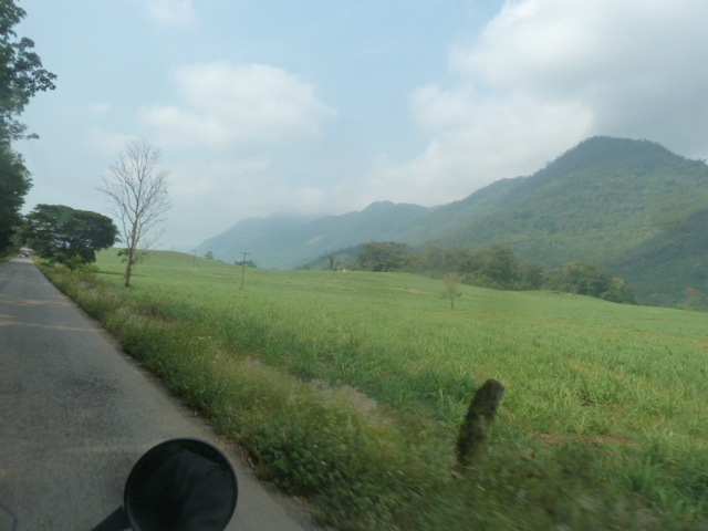 Sugarcane fields - climbing in altitude -