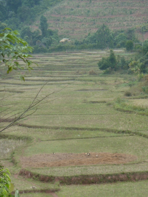 Northern Laos