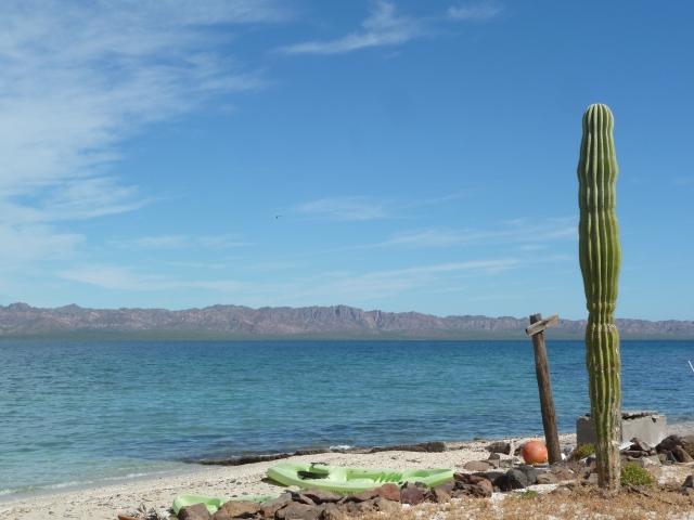 Sea of Cortez - Bay of Concepcion
